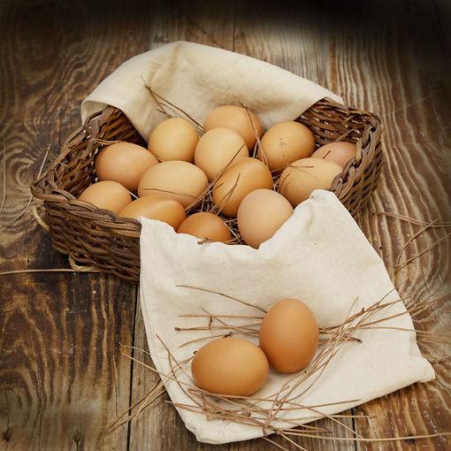 Köy Yumurtası 15'li yumurta (L) resmi